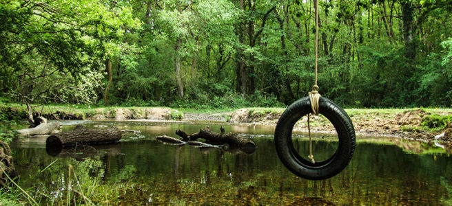 rope-swing-new-forest