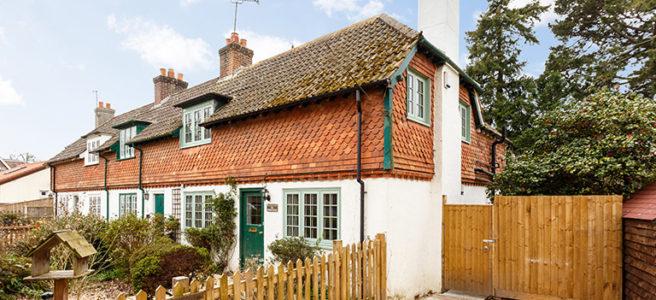 oak-tree-cottage-burley